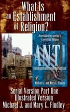 Illustrated What Is an Establishment of Religion? ebook by Mary C. Findley,Michael J. Findley