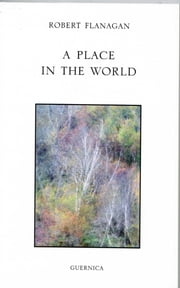 A PLACE IN THE WORLD ebook by Robert Flanagan