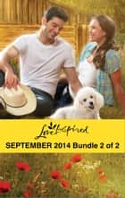 Love Inspired September 2014 - Bundle 2 of 2 - Her Hometown Hero\The Deputy's New Family\Rescuing the Texan's Heart ebook by Margaret Daley, Jenna Mindel, Mindy Obenhaus