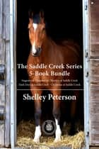 The Saddle Creek Series 5-Book Bundle - Christmas at Saddle Creek / Dark Days at Saddle Creek / and 3 more ebook by Shelley Peterson