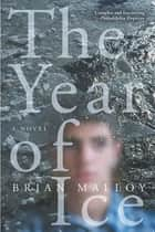 The Year of Ice ebook by Brian Malloy