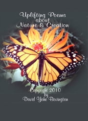 Nature and Creation ebook by David Y Bevington