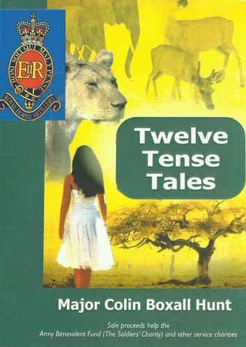 Twelve Tense Tales: Warty Book 2 ebook by Colin Boxall-Hunt