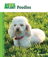Poodles ebook by Amy Fernandez