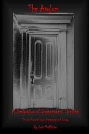 The Asylum: A Personal View of Organizational Lunacy ebook by Hugh McAllister