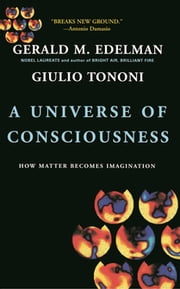A Universe Of Consciousness How Matter Becomes Imagination - How Matter Becomes Imagination ebook by Gerald Edelman,Giulio Tononi