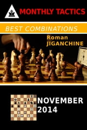 Best Combinations - November 2014 ebook by Roman Jiganchine
