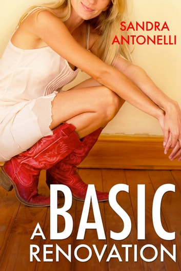 A Basic Renovation ebook by Sandra Antonelli
