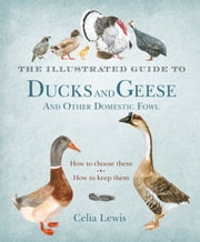 The Illustrated Guide to Ducks and Geese and Other Domestic Fowl - How To Choose Them - How To Keep Them ebook by Celia Lewis