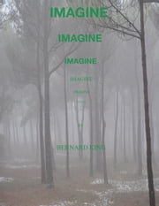 Imagine ebook by Bernard King