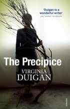 The Precipice - Neoliberalism, the Pandemic and the Urgent Need for Radical Change ebook by Virginia Duigan