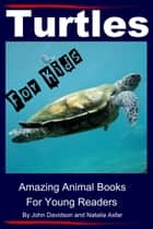 Turtles: For Kids - Amazing Animal Books for Young Readers ebook by John Davidson, Natalia Asfar