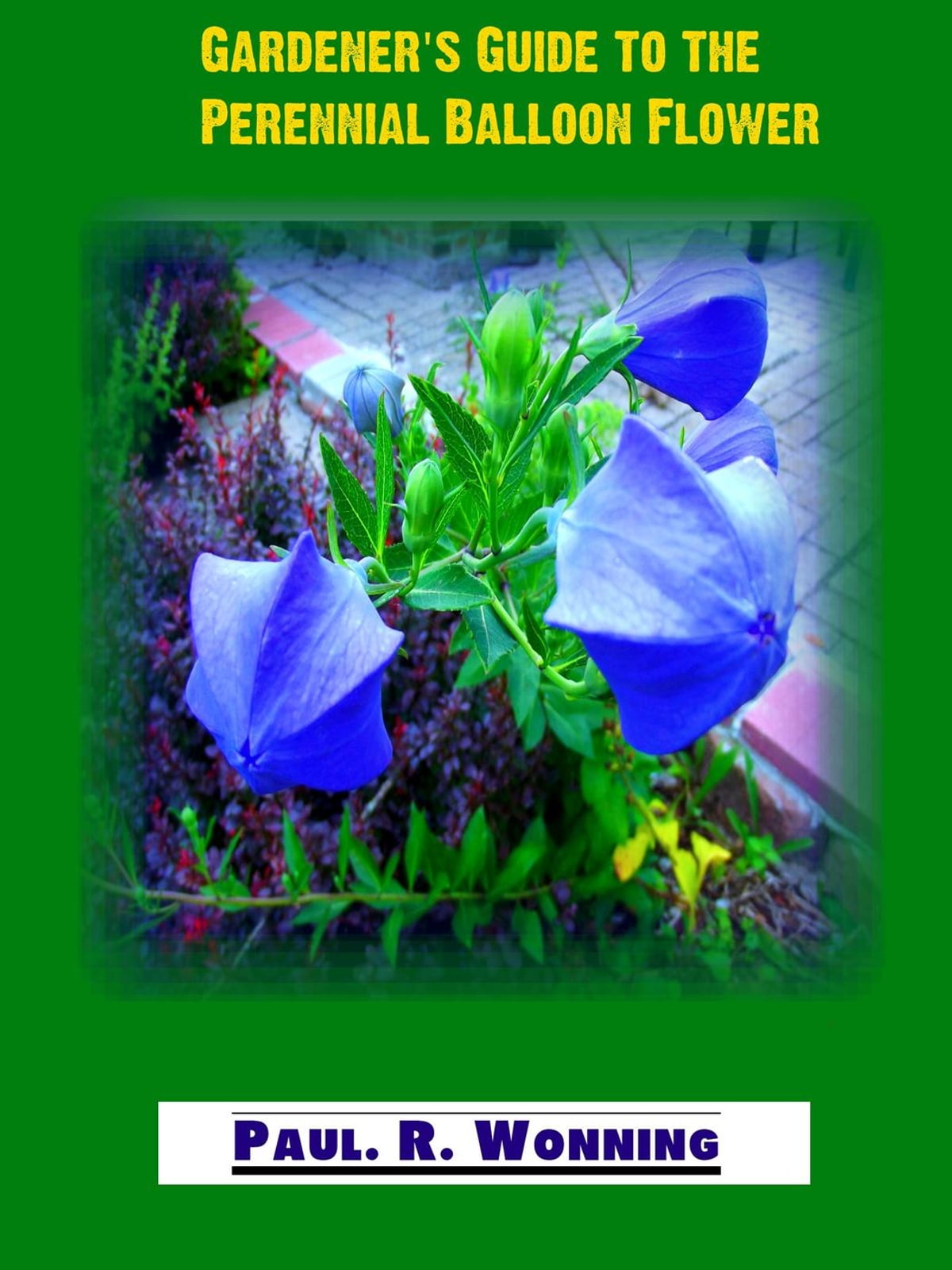 Gardeners Guide To The Perennial Balloon Flower Ebook By Paul R