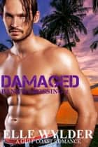 Damaged ebook by Elle Wylder