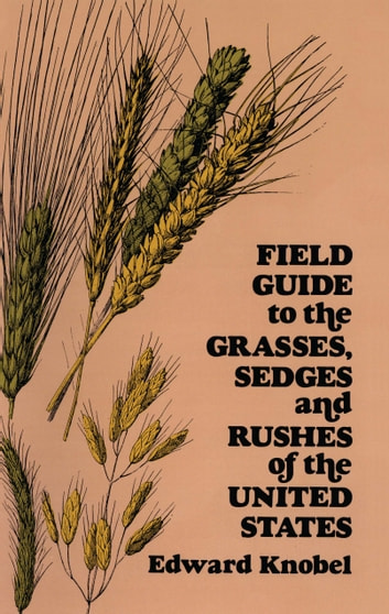 Field Guide to the Grasses, Sedges, and Rushes of the United States ebook by Edward Knobel