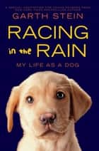 Racing in the Rain ebook by Garth Stein