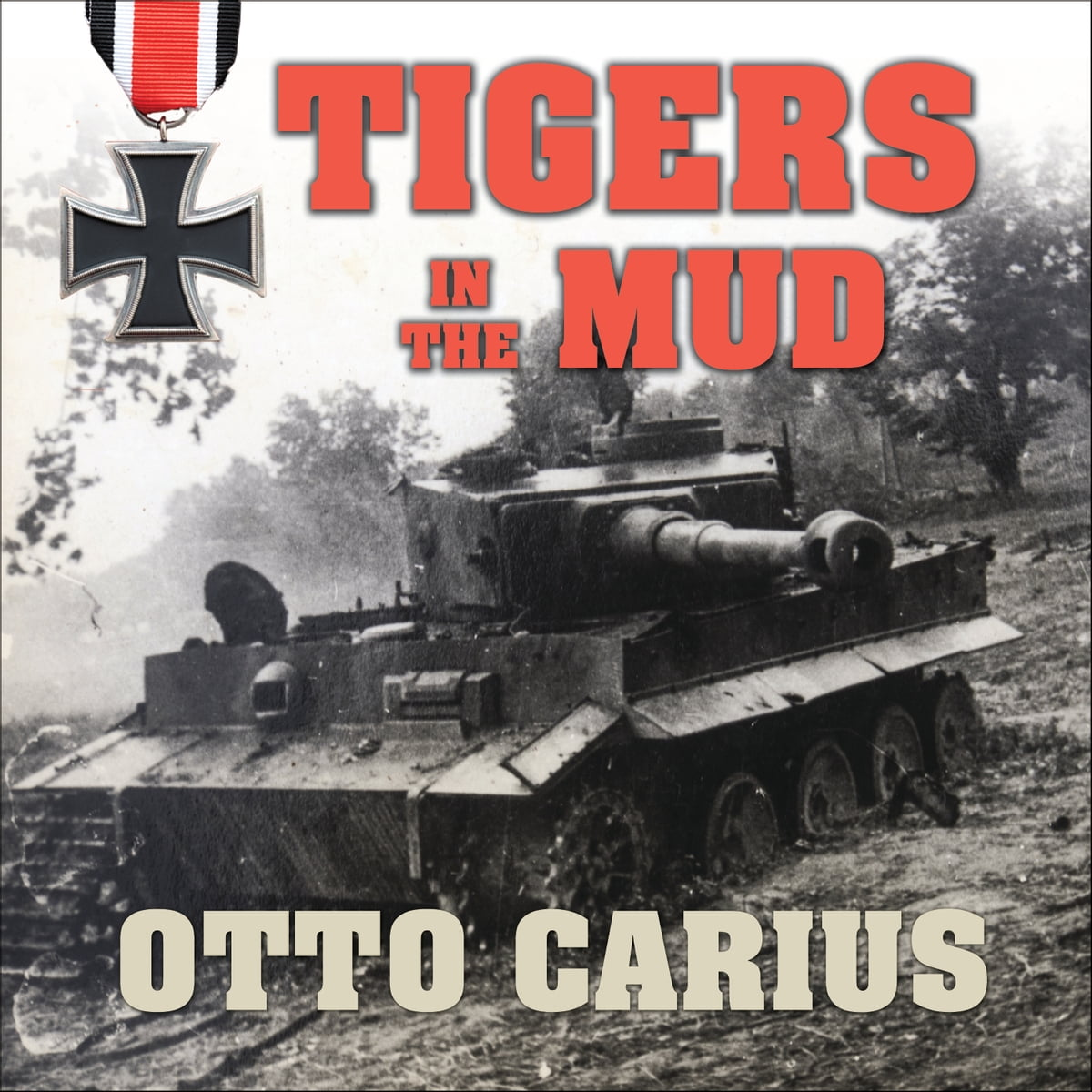 Image result for Tigers in the mud book