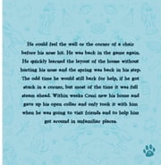 Cozzi Dog Can't See ebook by Kristina Martin