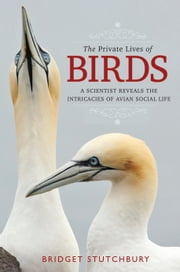 The Private Lives of Birds - A Scientist Reveals the Intricacies of Avian Social Life ebook by Bridget Stutchbury