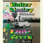 Little Green - An Easy Rawlins Mystery audiobook by Walter Mosley