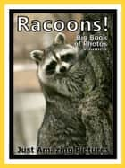 Just Racoon Photos! Big Book of Photographs & Pictures of Racoons Vol. 1 ebook by Big Book of Photos