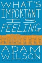 What's Important Is Feeling - Stories ebook by Adam Wilson