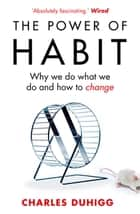The Power of Habit - Why We Do What We Do, and How to Change ebook by