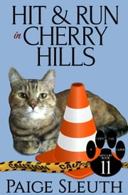 Hit and Run in Cherry Hills ebook by Paige Sleuth