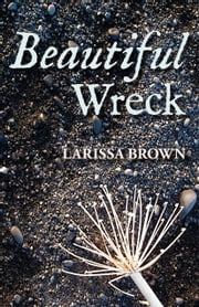 Beautiful Wreck ebook by Larissa Brown