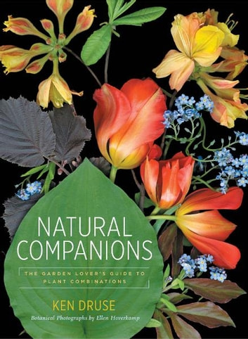 Natural Companions - The Garden Lover's Guide to Plant Combinations ebook by Ken Druse