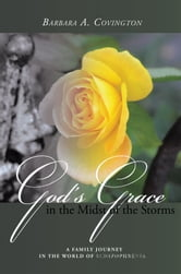 God's Grace in the Midst of the Storms - A Family Journey in the World of Schizophrenia ebook by Barbara A. Covington