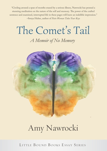 The Comet's Tail ebook by Amy Nawrocki