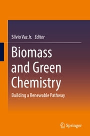 Biomass and Green Chemistry - Building a Renewable Pathway ebook by Sílvio Vaz Jr.