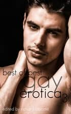 Best of Best Gay Erotica 3 ebook by Richard Labonte