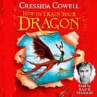 How To Train Your Dragon - Book 1 audiobook by Cressida Cowell