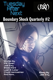 Tuesday After Next - Boundary Shock Quarterly #2 ebook by Blaze Ward, Leah Cutter, M. L. Buchman,...