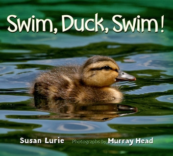 Swim, Duck, Swim! ebook by Susan Lurie