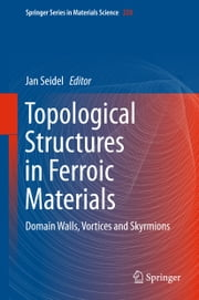 Topological Structures in Ferroic Materials - Domain Walls, Vortices and Skyrmions ebook by Jan Seidel