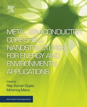Metal Semiconductor Core-shell Nanostructures for Energy and Environmental Applications ebook by Raju Kumar Gupta, Mrinmoy Misra