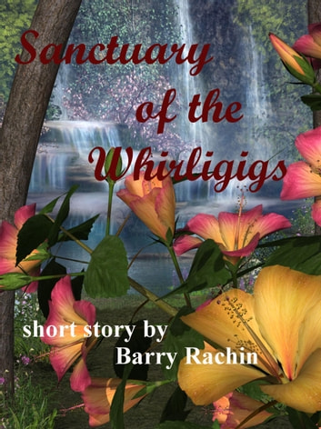 Sanctuary of the Whirligigs ebook by Barry Rachin