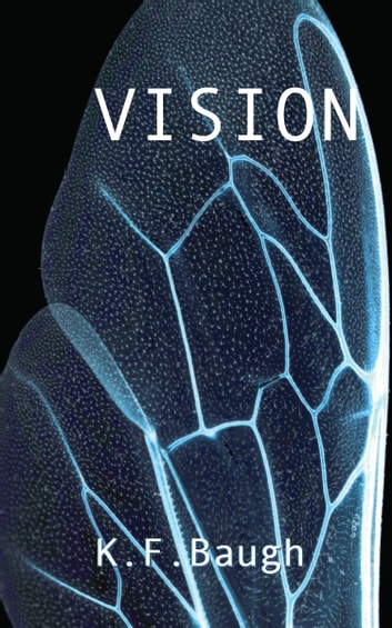 Vision ebook by K. F. Baugh
