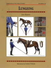 LUNGEING ebook by JUDY HARVEY