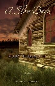 A Slow Burn - A Novel ebook by Mary E DeMuth