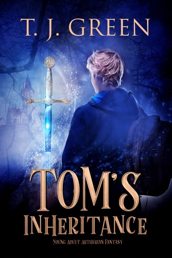 Tom's Inheritance ebook by T J Green