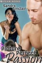 Picture Perfect Passion ebook by Sandra Sinclair,Steam Books