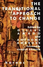 The Transitional Approach to Change ebook by