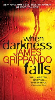 When Darkness Falls ebook by James Grippando