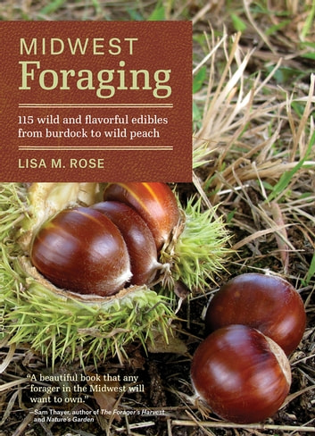 Midwest Foraging - 115 Wild and Flavorful Edibles from Burdock to Wild Peach ebook by Lisa M. Rose