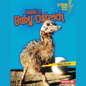 Meet a Baby Ostrich audiobook by Marie Powell