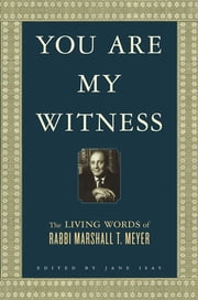 You Are My Witness - The Living Words of Rabbi Marshall T. Meyer ebook by Marshall T. Meyer,Jane Isay,Naomi Meyer